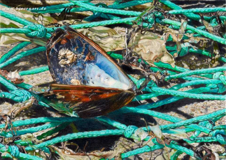 CAUGHT AND FORGOTTEN IN THE NET