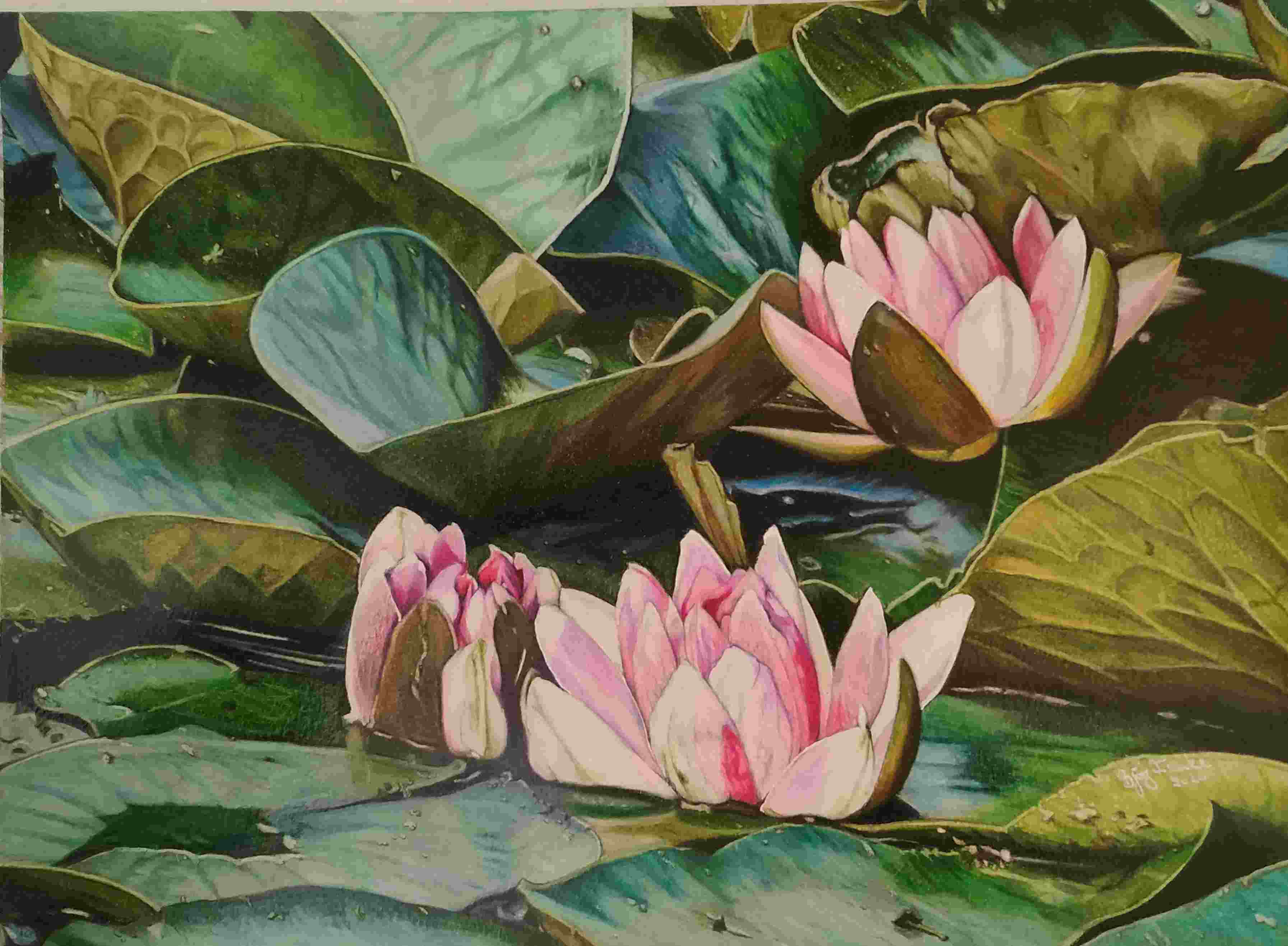 Title: »In the water lily pond«